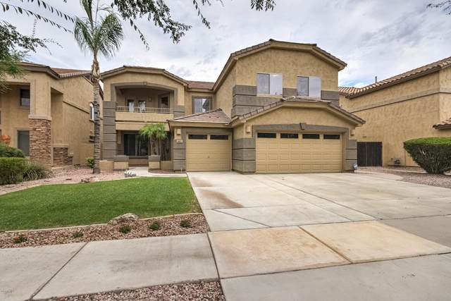 462 W Pelican Drive, Chandler, AZ 85286 (MLS #6087848) :: Brett Tanner Home Selling Team