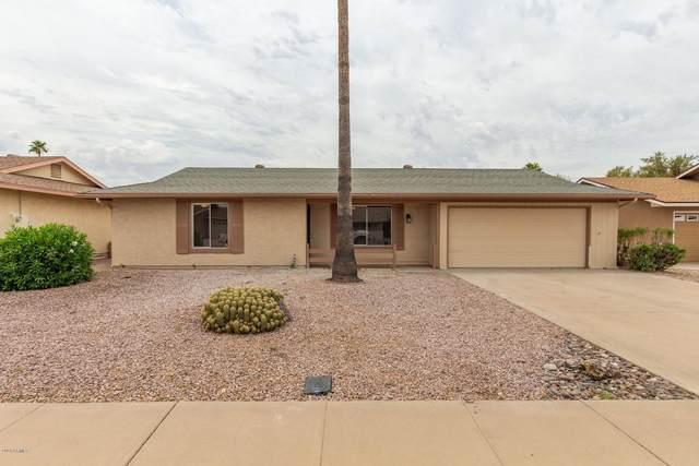 861 Leisure World, Mesa, AZ 85206 (MLS #6087879) :: Revelation Real Estate