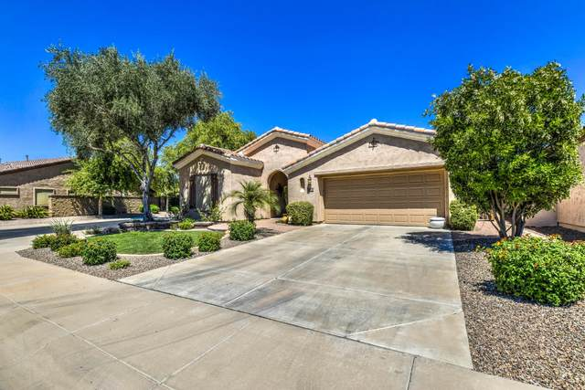 5273 S Harvest Street, Gilbert, AZ 85298 (MLS #6087882) :: Openshaw Real Estate Group in partnership with The Jesse Herfel Real Estate Group