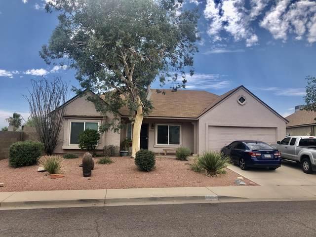 19054 N 13 Street, Phoenix, AZ 85024 (MLS #6087888) :: ASAP Realty