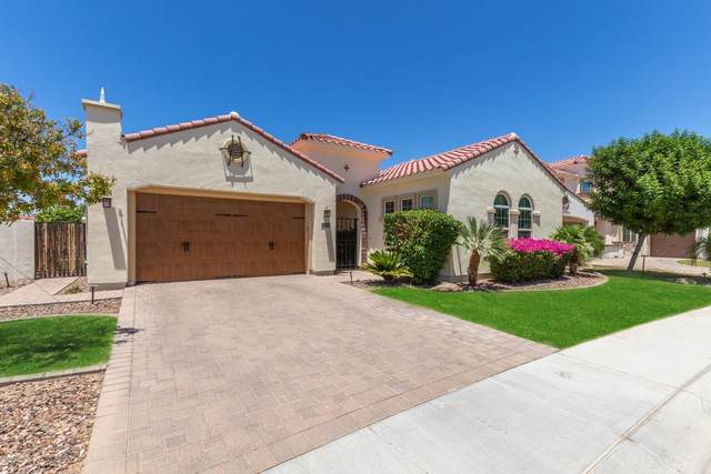 2448 W Hope Circle, Chandler, AZ 85248 (MLS #6087938) :: Brett Tanner Home Selling Team