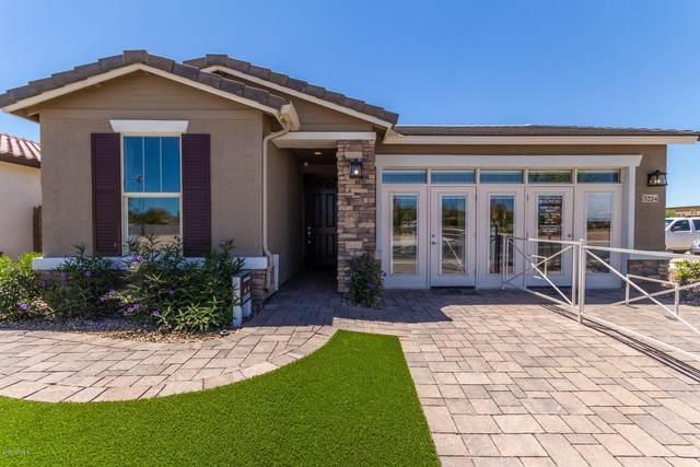 3224 S 75TH Drive, Phoenix, AZ 85043 (MLS #6088031) :: Brett Tanner Home Selling Team