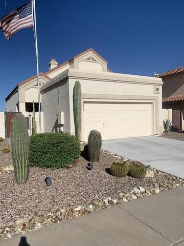 19415 N 76th Avenue, Glendale, AZ 85308 (MLS #6088058) :: The Laughton Team