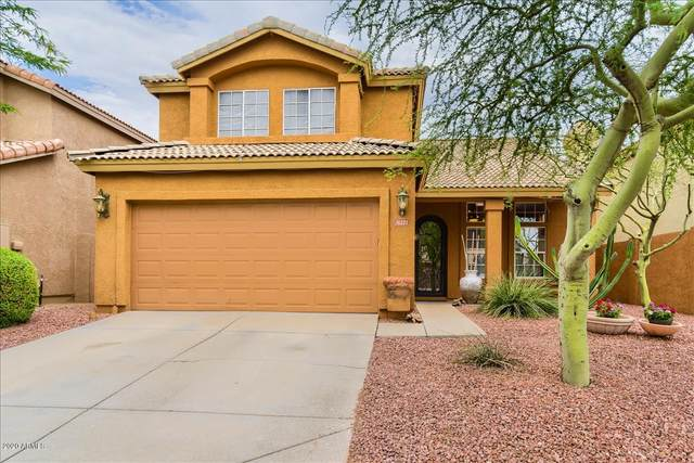31227 N 43RD Street, Cave Creek, AZ 85331 (MLS #6088095) :: Yost Realty Group at RE/MAX Casa Grande