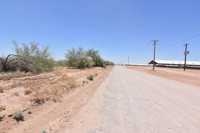 29701 W Peter Road, Casa Grande, AZ 85193 (MLS #6088152) :: Long Realty West Valley