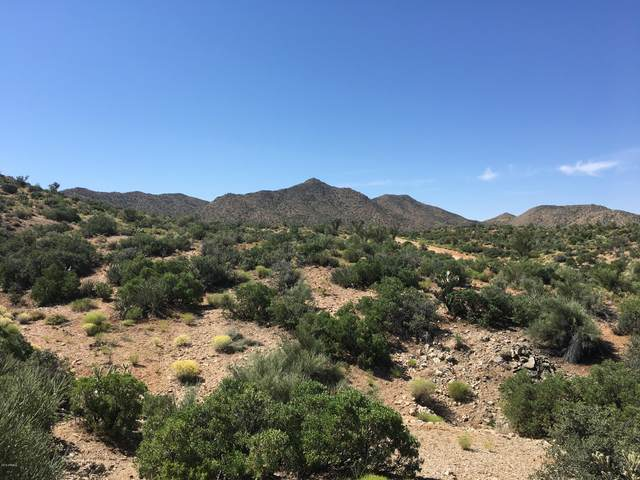 Lot 96 New Water Well Road, Kingman, AZ 86401 (MLS #6088189) :: Midland Real Estate Alliance