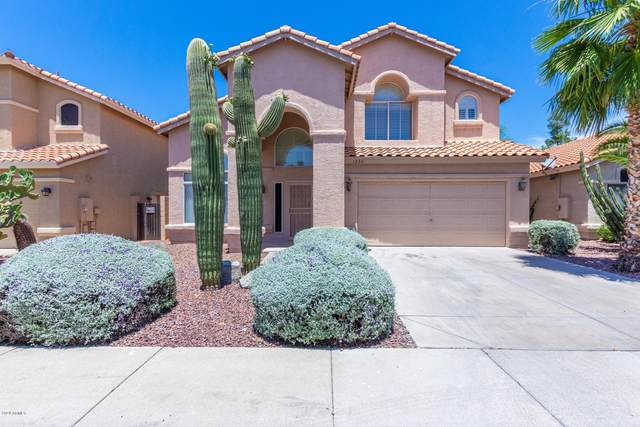 1230 E Saint John Road, Phoenix, AZ 85022 (MLS #6088291) :: Klaus Team Real Estate Solutions