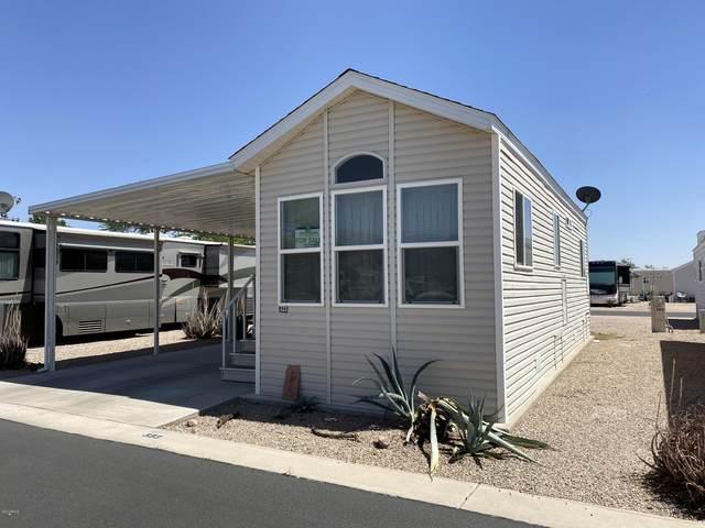 6601 E Us Highway 60 #333, Gold Canyon, AZ 85118 (MLS #6088298) :: Brett Tanner Home Selling Team