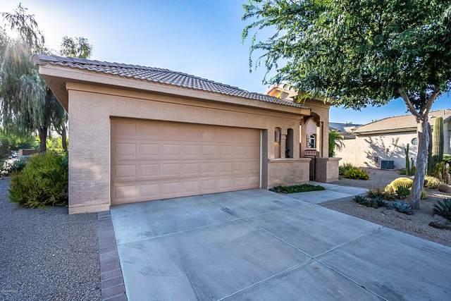 24520 S Desert Trail Drive, Sun Lakes, AZ 85248 (MLS #6088580) :: Brett Tanner Home Selling Team