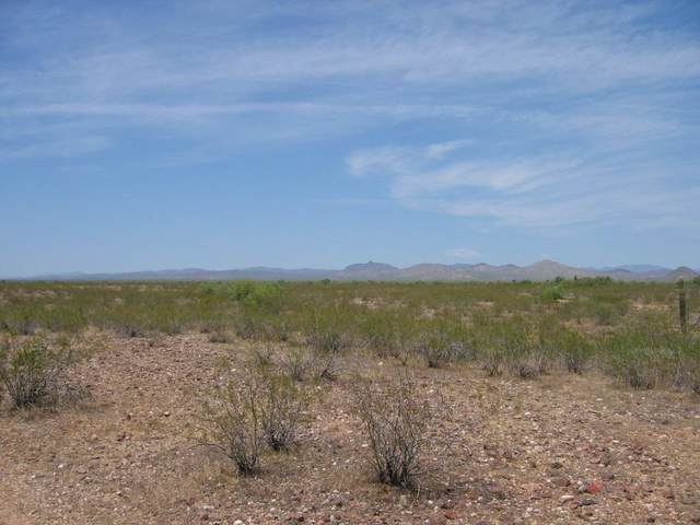 22100 W Restin Road, Wittmann, AZ 85361 (MLS #6088691) :: The Daniel Montez Real Estate Group