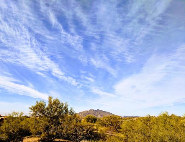 9198 E Sky Line Drive, Scottsdale, AZ 85262 (MLS #6088882) :: The Luna Team