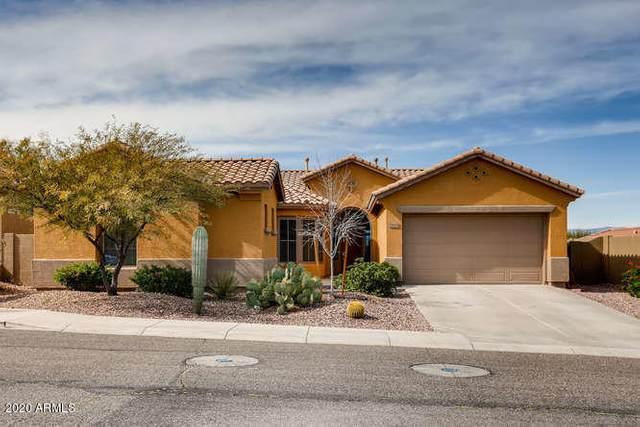 38818 N Red Tail Lane, Phoenix, AZ 85086 (MLS #6088991) :: Kepple Real Estate Group