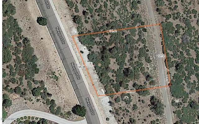 441 Newport Drive, Prescott, AZ 86303 (MLS #6089014) :: Long Realty West Valley