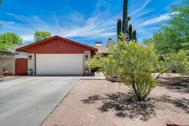 1189 E Redfield Road, Tempe, AZ 85283 (MLS #6089226) :: My Home Group