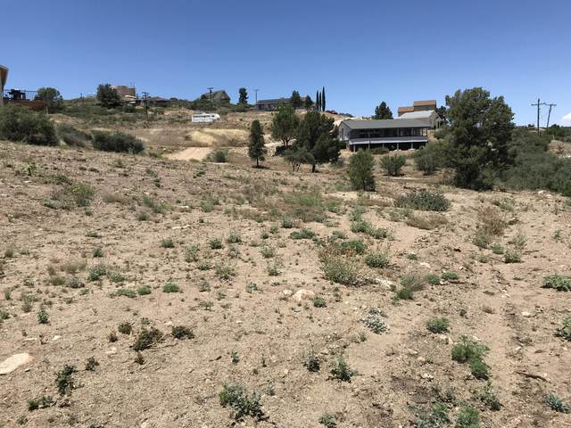18369 S Tawny Lane, Peeples Valley, AZ 86332 (MLS #6089251) :: Klaus Team Real Estate Solutions