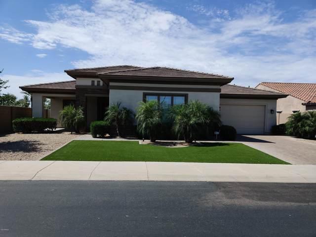 14767 W Escondido Drive N, Litchfield Park, AZ 85340 (MLS #6089270) :: The Garcia Group