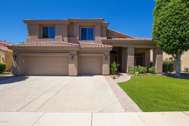 4422 S Wildflower Place, Chandler, AZ 85248 (MLS #6089362) :: Klaus Team Real Estate Solutions