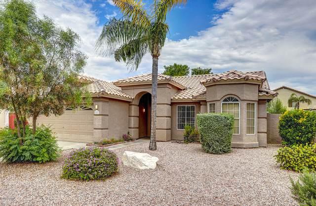 20221 N 29TH Street, Phoenix, AZ 85050 (MLS #6089372) :: Lifestyle Partners Team