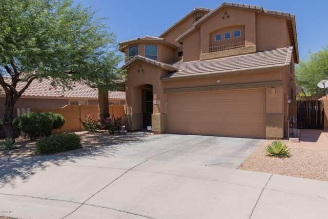 2208 W Via Caballo Blanco, Phoenix, AZ 85085 (MLS #6089449) :: REMAX Professionals