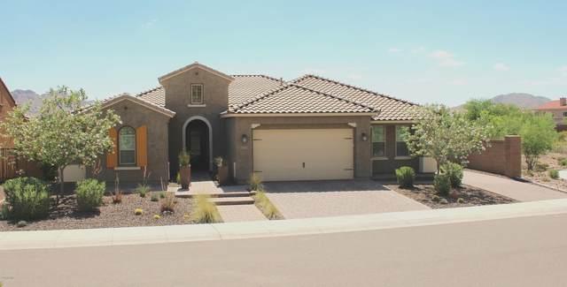 27331 N Silverado Ranch Road, Peoria, AZ 85383 (MLS #6089699) :: Howe Realty