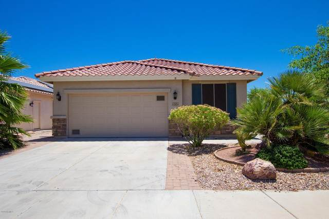 23029 W Lasso Lane, Buckeye, AZ 85326 (MLS #6089700) :: Yost Realty Group at RE/MAX Casa Grande