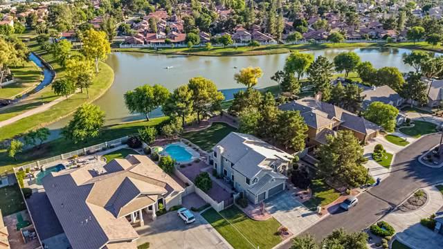 5691 W Linda Lane, Chandler, AZ 85226 (MLS #6089781) :: Lucido Agency