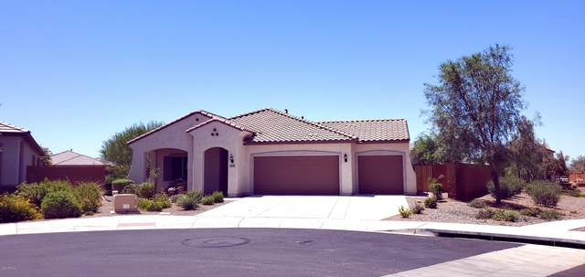19946 N 260TH Drive, Buckeye, AZ 85396 (MLS #6089804) :: The Luna Team