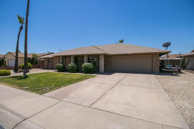 3945 W Danbury Drive, Glendale, AZ 85308 (MLS #6089859) :: REMAX Professionals