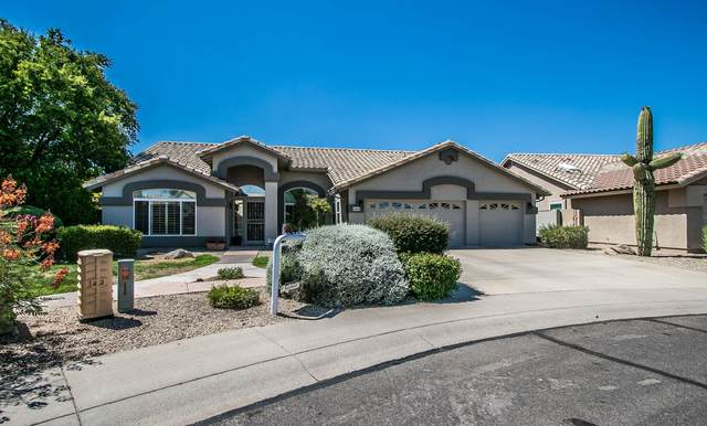 29628 N 44TH Place, Cave Creek, AZ 85331 (MLS #6089933) :: Yost Realty Group at RE/MAX Casa Grande