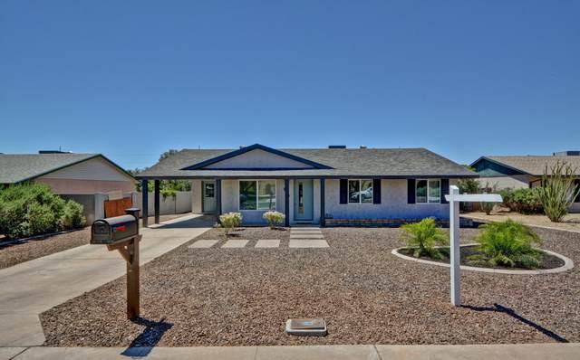 919 E Cheryl Drive, Phoenix, AZ 85020 (MLS #6090034) :: Brett Tanner Home Selling Team