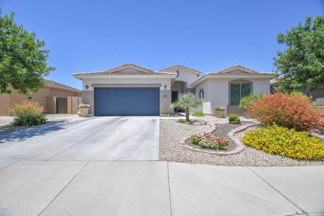 2528 E Katrina Trail, Casa Grande, AZ 85194 (MLS #6090047) :: Lux Home Group at  Keller Williams Realty Phoenix