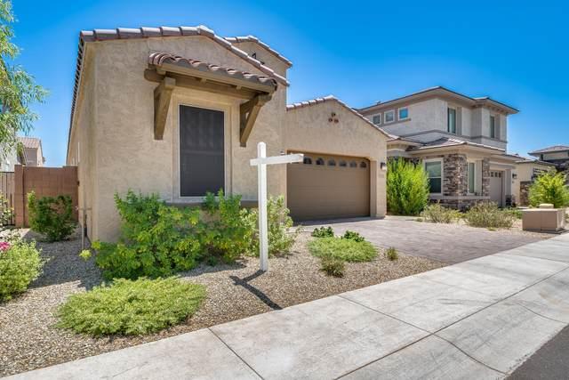 221 W Sandra Terrace, Phoenix, AZ 85023 (MLS #6090207) :: Devor Real Estate Associates
