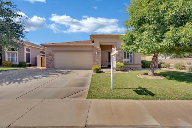 3360 E Hampton Lane, Gilbert, AZ 85295 (MLS #6090209) :: Klaus Team Real Estate Solutions