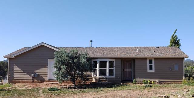 255 E Hazelwood Road, Young, AZ 85554 (MLS #6090372) :: My Home Group