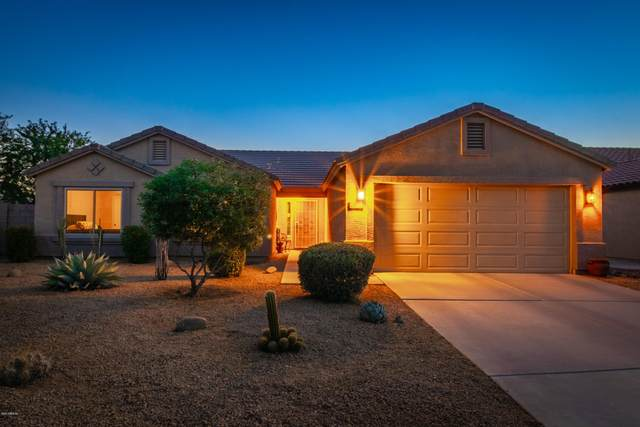 15614 N 163rd Lane, Surprise, AZ 85388 (MLS #6090380) :: Yost Realty Group at RE/MAX Casa Grande