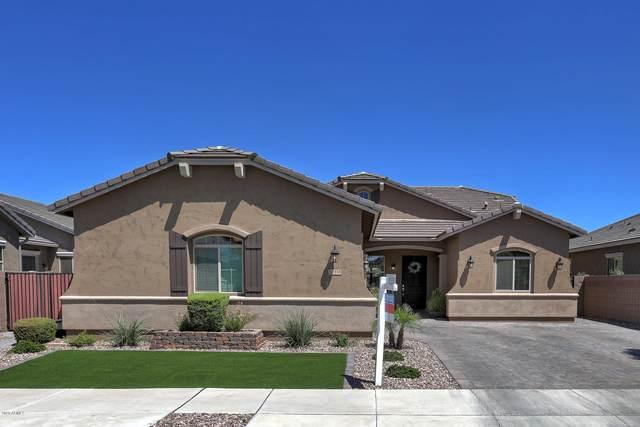 20338 E Mockingbird Drive, Queen Creek, AZ 85142 (MLS #6090397) :: The Laughton Team