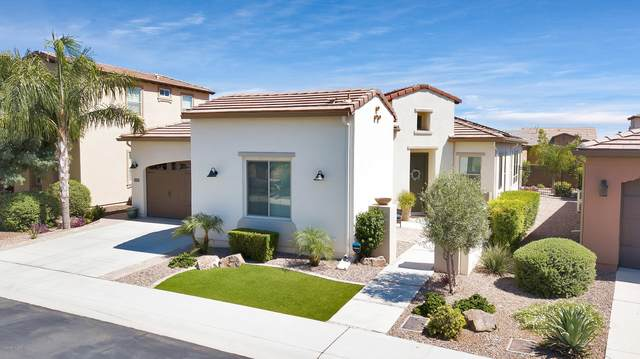 1551 E Elysian Pass, San Tan Valley, AZ 85140 (MLS #6090541) :: Lux Home Group at  Keller Williams Realty Phoenix