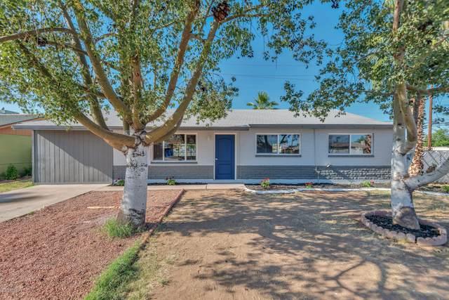 3102 W Corrine Drive, Phoenix, AZ 85029 (MLS #6090561) :: The W Group