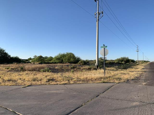 14523 S Lamb Road, Arizona City, AZ 85123 (MLS #6090804) :: Long Realty West Valley