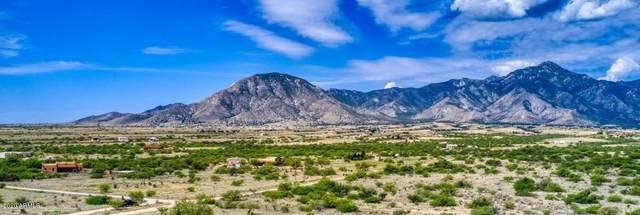 TBD E Bloomfield Road, Hereford, AZ 85615 (MLS #6090886) :: Dave Fernandez Team | HomeSmart