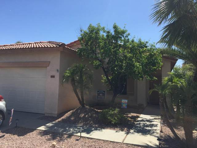 16040 N 168TH Lane, Surprise, AZ 85388 (MLS #6090901) :: Yost Realty Group at RE/MAX Casa Grande