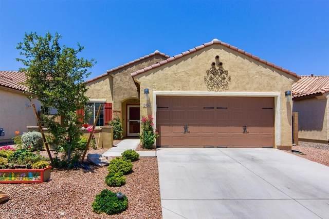 2426 N Petersburg Drive, Florence, AZ 85132 (MLS #6090945) :: Lucido Agency
