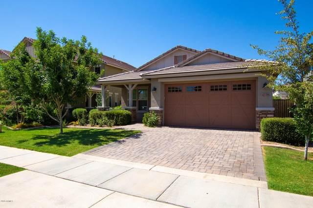 4338 E Palo Verde Street, Gilbert, AZ 85296 (MLS #6090992) :: Homehelper Consultants