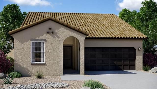 241 N 199TH Lane, Buckeye, AZ 85326 (MLS #6091073) :: Klaus Team Real Estate Solutions