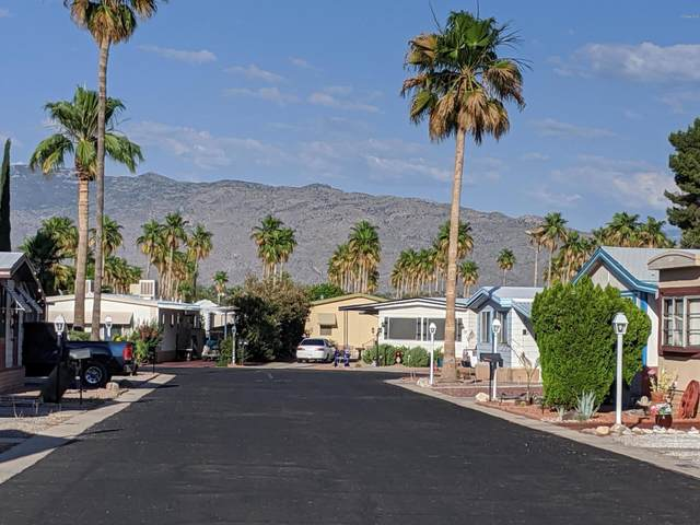 3411 S Camino Seco, Tucson, AZ 85730 (MLS #6091074) :: Lucido Agency