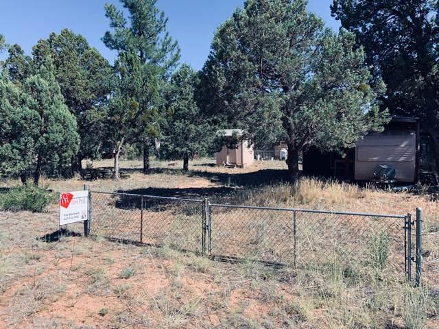2177/2179 Hashknife Drive, Overgaard, AZ 85933 (MLS #6091133) :: Devor Real Estate Associates
