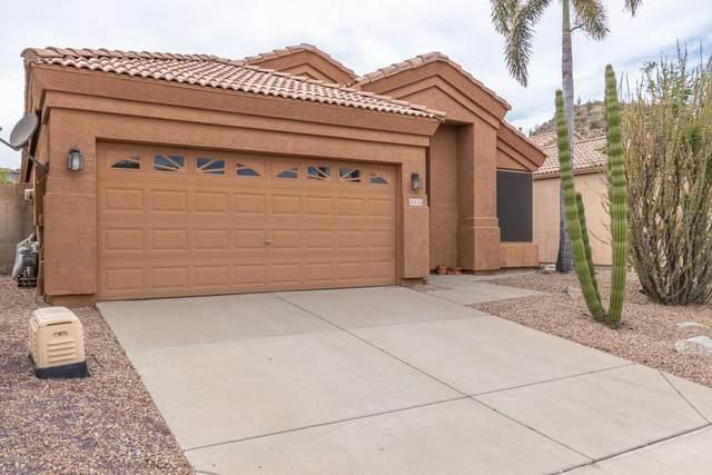 19442 N 23RD Way, Phoenix, AZ 85024 (MLS #6091156) :: Klaus Team Real Estate Solutions