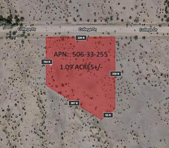 44073 W College Drive, Tonopah, AZ 85354 (MLS #6091165) :: The W Group