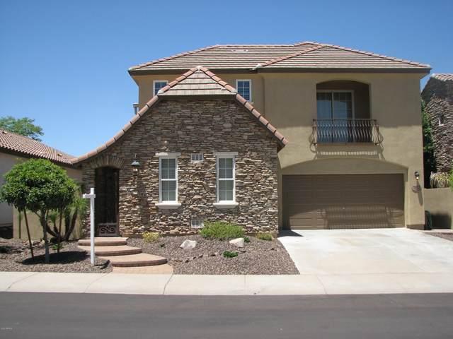18150 W Carol Avenue W, Waddell, AZ 85355 (MLS #6091204) :: The AZ Performance PLUS+ Team