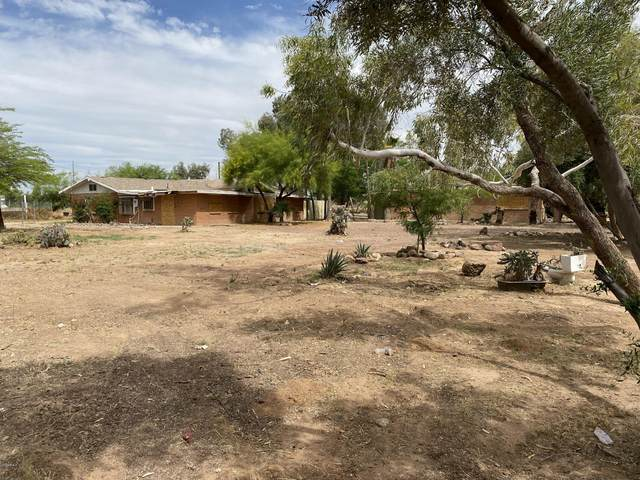 21710 W Wilson Avenue, Wittmann, AZ 85361 (MLS #6091345) :: Brett Tanner Home Selling Team